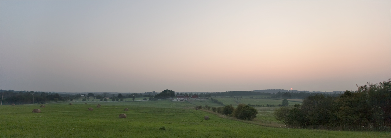 image of a misty pink sunset over a lush green horse farm.