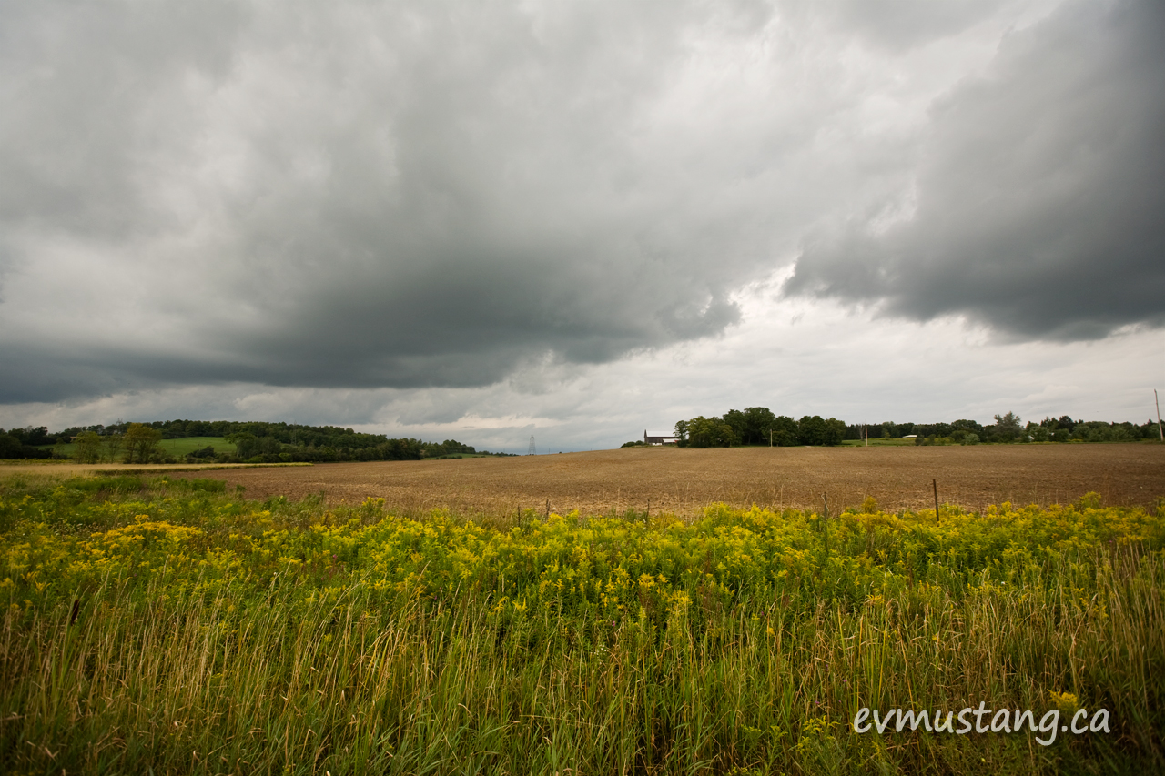 image of clouds over a ploughed field with goldenrod