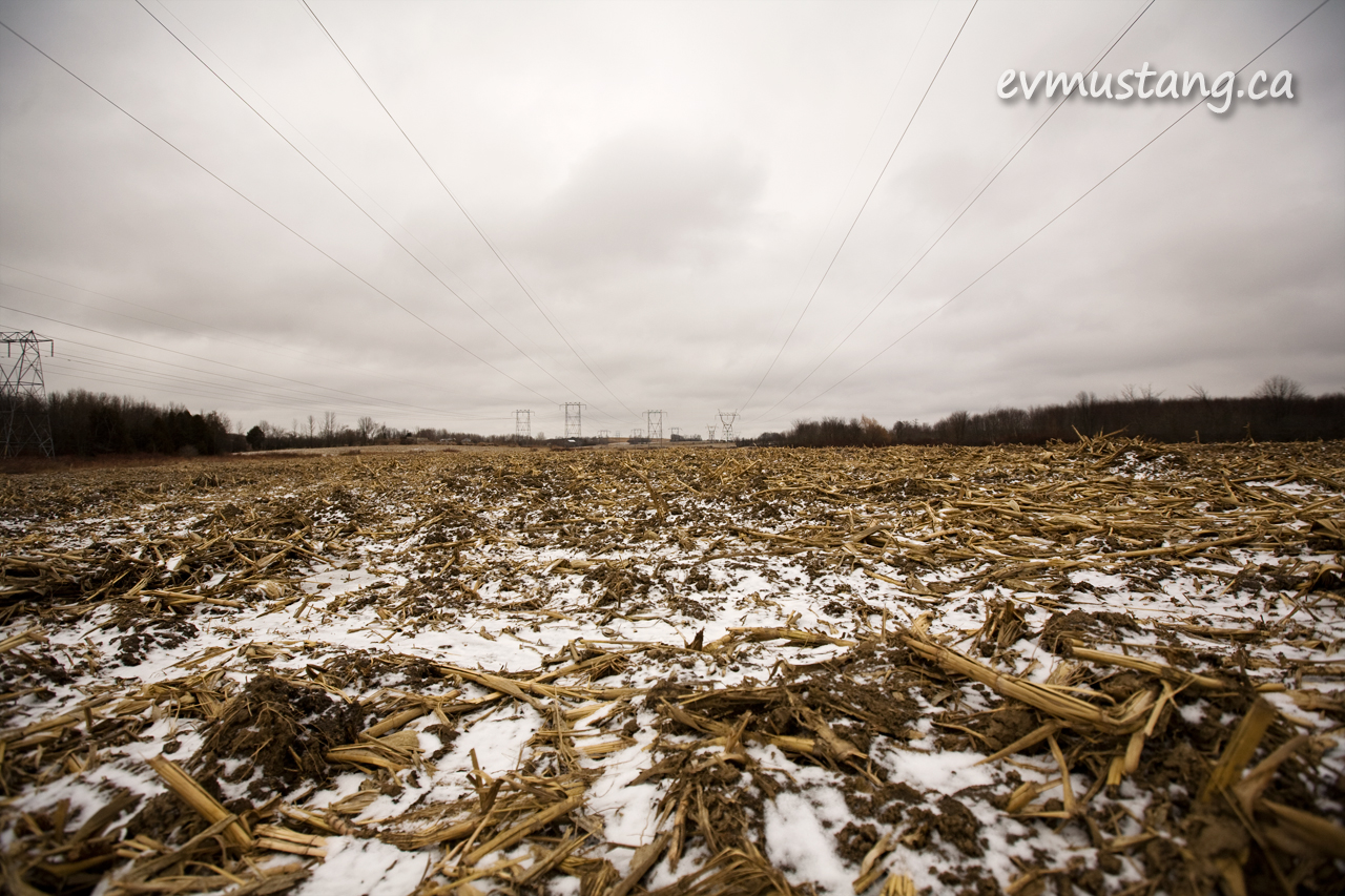 image of corn field in winter with hydro wires