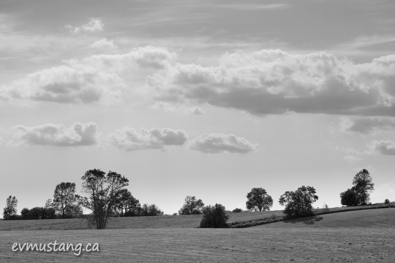 black and white image of field and clouds
