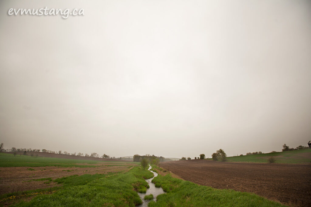 image of stream in fog in late spring