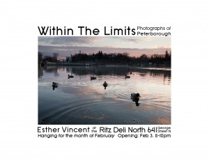 image of poster for Within the Limits exhibition