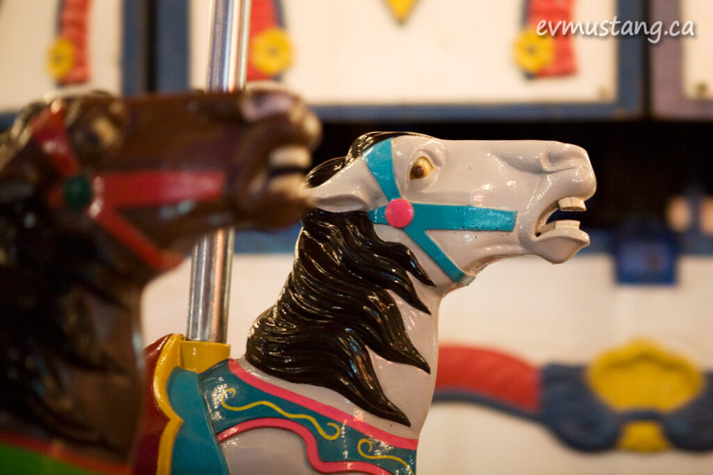 image of merr go round horse head