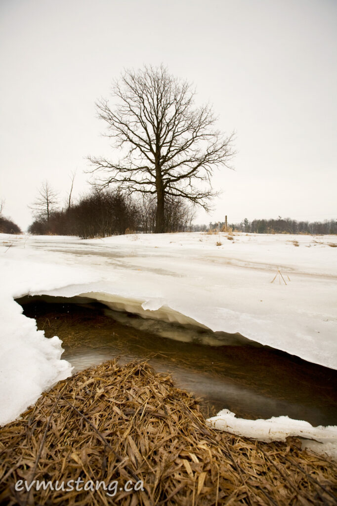 image of water running under ice shelf