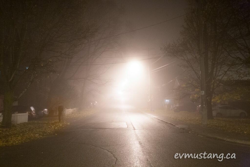 fog_walk2015_2